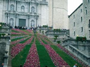Girona flors