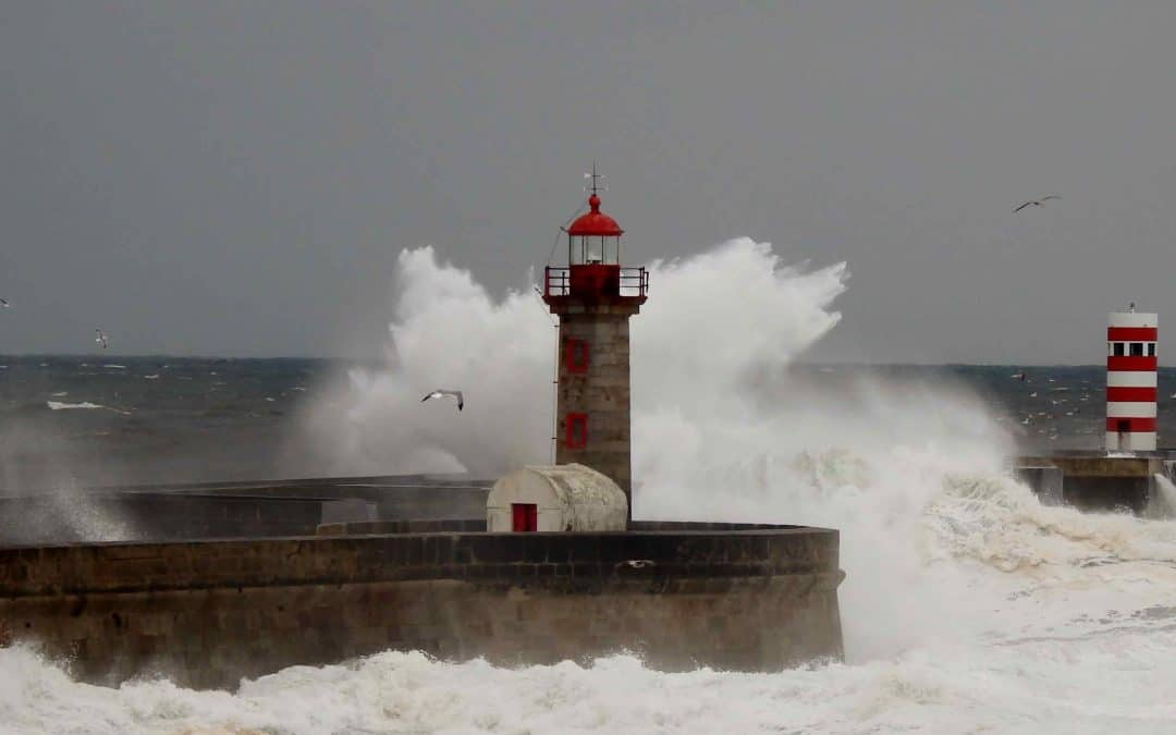 Faros en este mar tempestuoso