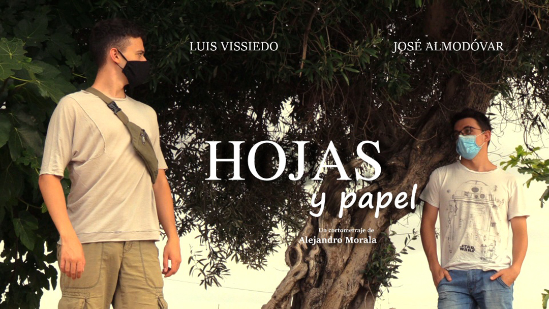 Hojas y papel