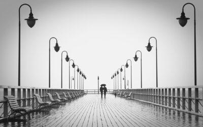 La sensibilidad hacia el otro