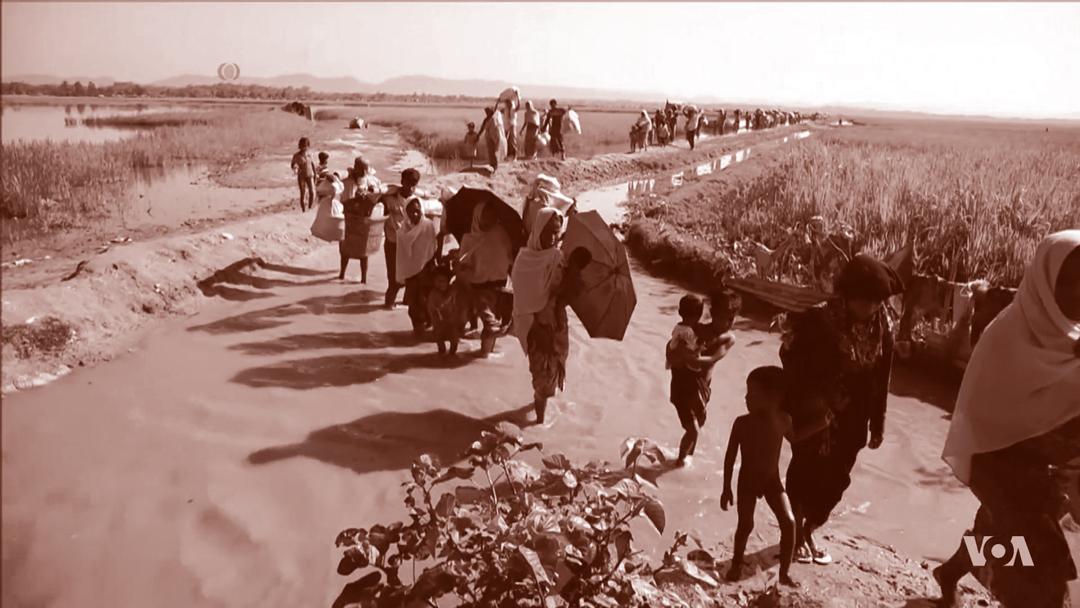 Refugiats Rohingya